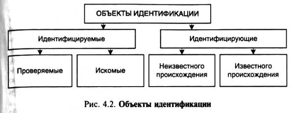 идентификация криминалистики схема